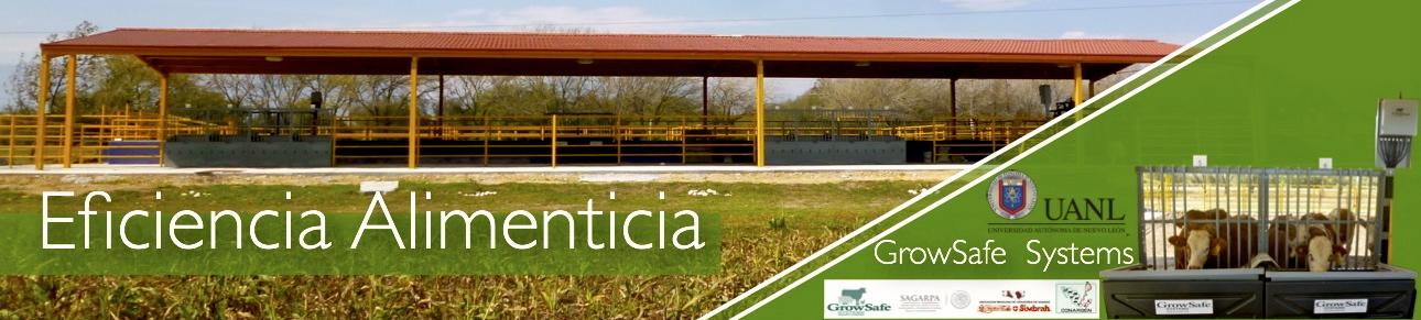 Marquesina-Eficiencia_Alimenticia_uno